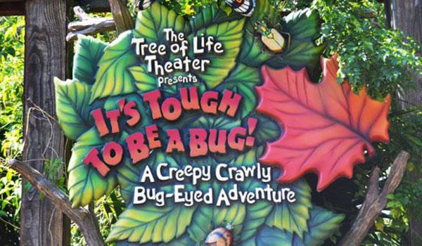 Animal Kingdom insekty