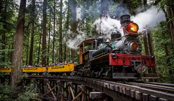 pociąg w Roaring Camp