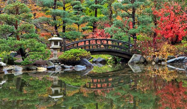 japońskie ogrody Rockford