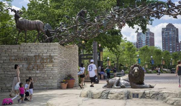 Zoo Chicago