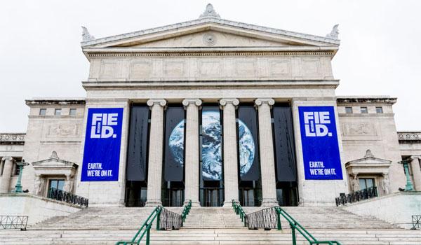 atrakcje turystyczne Chicago Field Museum