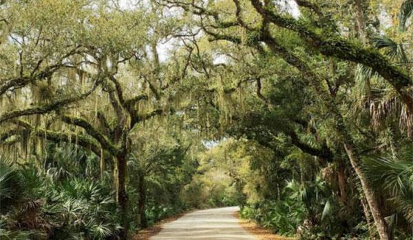 Floryda parki narodowe