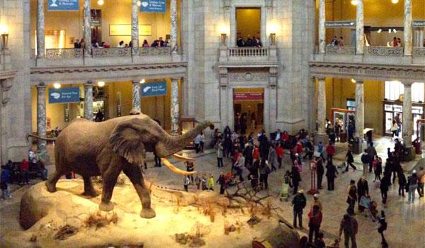 Natural History Museum Waszyngton