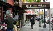Polonia w Nowym Jorku