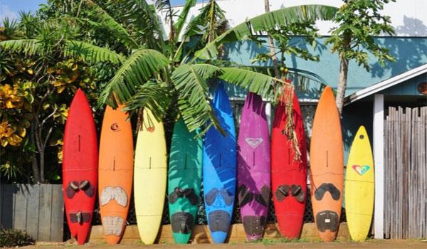 surf Hawaje